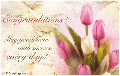 bloom  success  congratulations ecards greeting cards