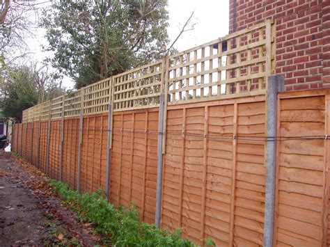 Trellis Fencing by Trellis Fence Fl Vines Fences Garden