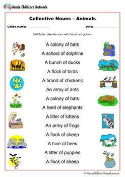 collective nouns animals worksheet collective nouns