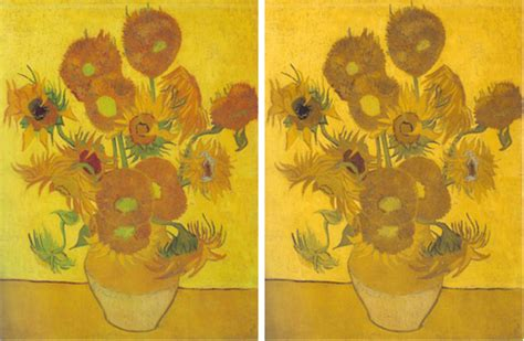 are bees color blind the science of gogh the scientist magazine 174