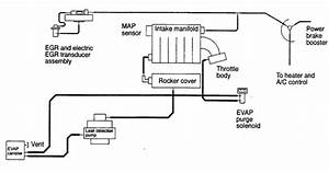 2000 Chrysler Cirrus Vacuum Line Diagram  2000  Free Engine Image For User Manual Download