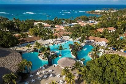 Cofresi Palm Resort Spa Plata Puerto Hotels
