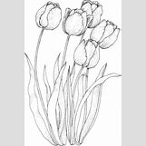 Flower Garden Coloring Pages For Kids   319 x 480 gif 46kB