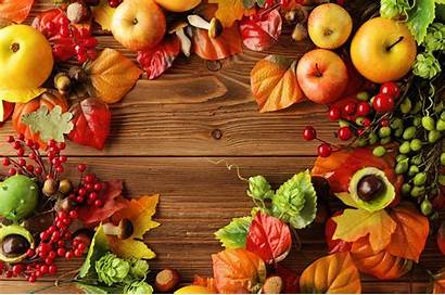 Fruits Background Harvest Autumn Apples Fruit Wallpapers