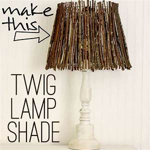 Adorne, Your, Home, With, Diy, Twig, Decorations
