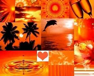MY FAVORITE THINGS The Color Orange