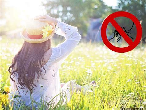14 Hausmittel Gegen Mücken, Die Mückenstichen Vorbeugen