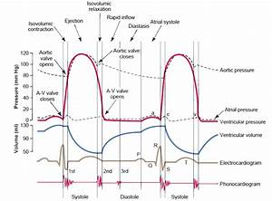 A Quick Guide To Ecg