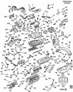 Gm 3 8l Engine Diagram Cooling System  Gm  Free Engine Image For User Manual Download