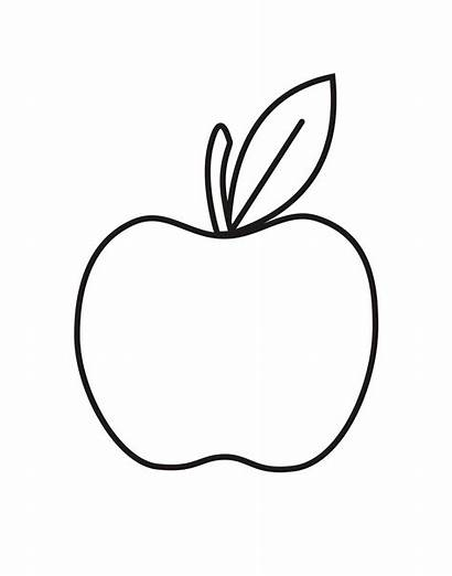 Apple Coloring Pages Printable Template Outline Sheet