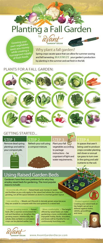 plant a fall vegetable garden avant garden decor