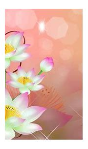 Beautiful White Flowers Abstract HD Wallpaper Image ...