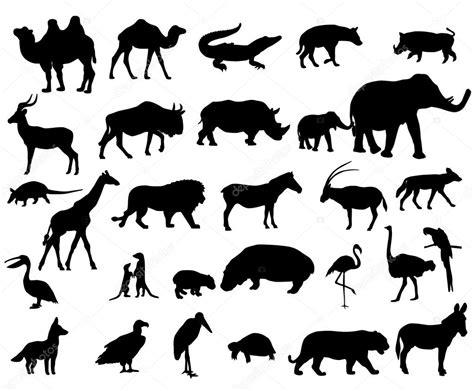 animals  africa stock vector