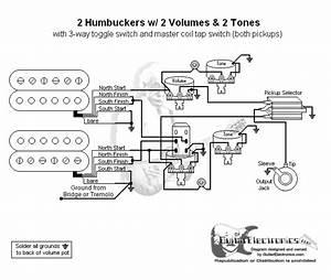 2 Humbuckers  3 2 Volumes  2 Tones  Coil Tap