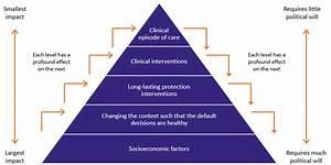 Model Of Care