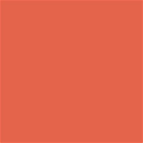 thatch brown paint color sw 6145 by sherwin williams view