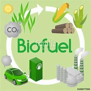 Biofuel   www.imgkid.com - The Image Kid Has It!