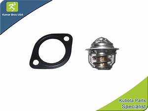 New Kubota V1902 Thermostat  U0026 Gasket