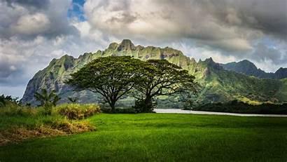 Hdr Hawaii Landscape Nature 4k Wallpapers Desktop