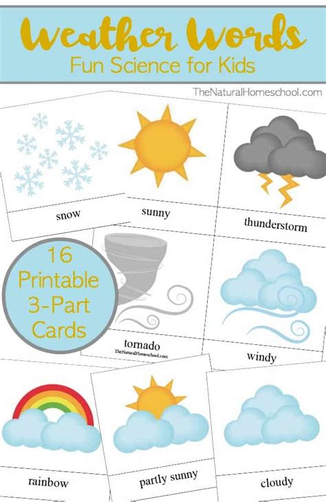 Weather Words For Kids {printable 3part Card Set}  The Natural Homeschool
