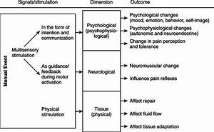 Manual Therapy In Sports Rehabilitation
