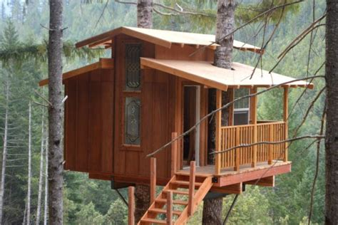 tree house hotel redwood forest the epic treehouse in northern california in a redwood forest