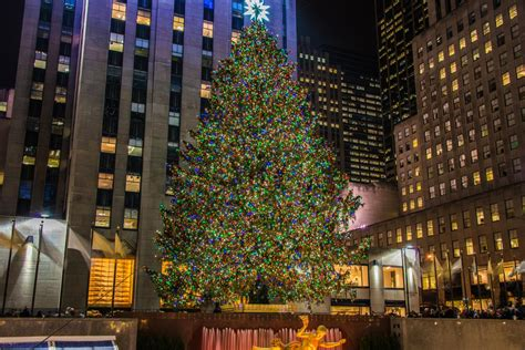 wallpaper rockefeller center tree 2 17 the rockefeller tree 2016 17 top 10 facts