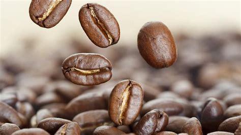 la cuisine de corinne caféine et incontinence quelle relation de smart