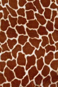 мех, skin giraffe, texture fur, fur texture background ...