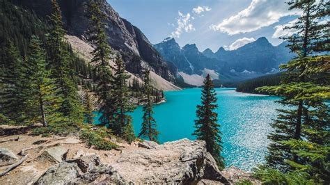 Download Sunny Day Over Moraine Lake Hd Wallpaper For 1600
