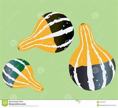 Gourd Illustrations