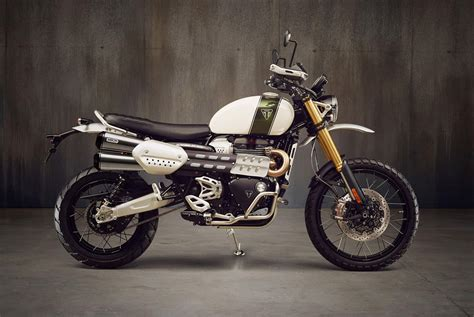 Modification Triumph Scrambler 1200 by The 2019 Triumph Scrambler 1200 Is Going Ducati