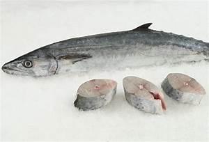 Fresh Wild Kingfish, Whole