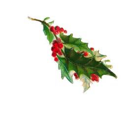 christmas holly picture cliparts co