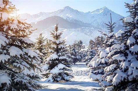 imagenes de invierno fotos  paisajes bonitos noviembre