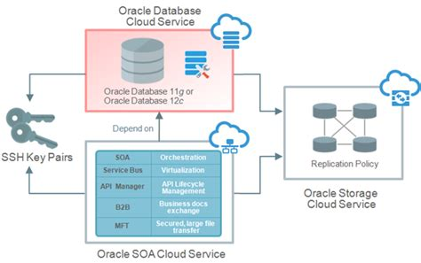 Creating An Oracle Database Cloud Service Instance. Top Ranking Undergraduate Business Schools. What Is Insurance Deductible. Child Support Services Riverside. Pikes Peak Community College Online. Hotels In Antananarivo Madagascar. Ethereal Packet Sniffer When Can You Move Out. Industrial Floor Cleaning Dallas Storage Unit. Secure Coding Practices Exchange Email Log In