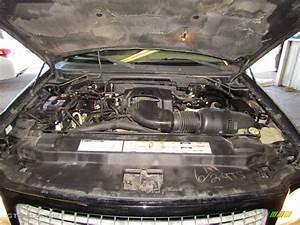2001 Ford Expedition Eddie Bauer 5 4 Liter Sohc 16