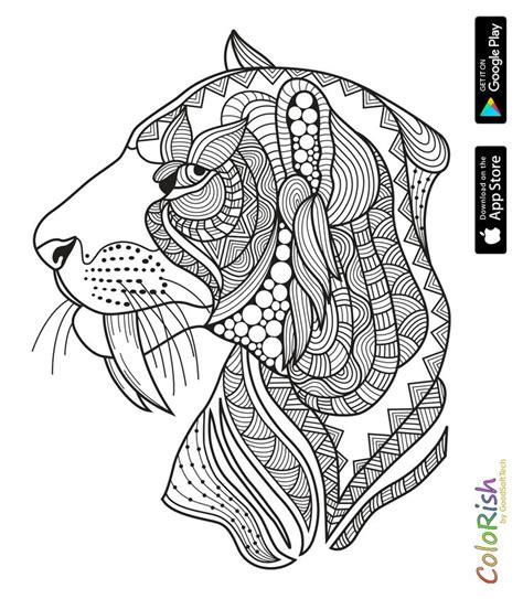 images  coloring lion tiger  pinterest