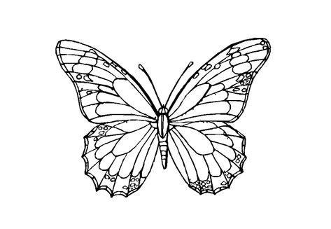 Maybe you would like to learn more about one of these? 38 Schmetterling Vorlage Pdf - Besten Bilder von ausmalbilder