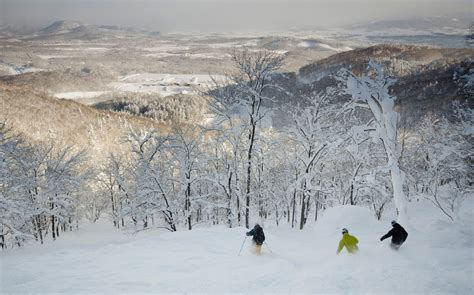backcountry skiing  japan   accessible