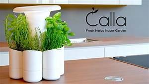 Jardin D Interieur : calla un jardin d 39 int rieur design qui conserve vos herbes ~ Dode.kayakingforconservation.com Idées de Décoration