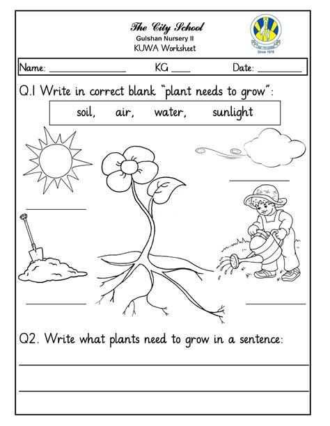 what plants need to grow worksheet free printables worksheet