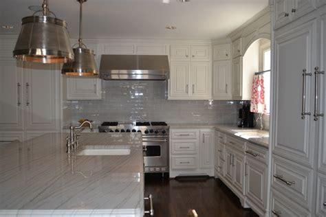 grey  white kitchen traditional kitchen dallas