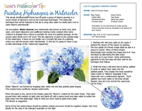 painting hydrangess in watercolor tips tutorials by susie