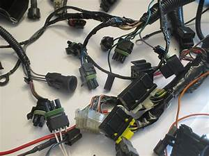 Buick Grand National Wiring Harness
