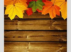 Autumn Phone Wallpapers 22 Wallpapers – Adorable Wallpapers