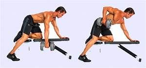 Build Bigger Lats : Bent Over Dumbbell Row - WeetNow