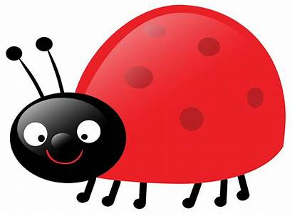 Clipart Ladybug Cliparts Clip Bug Lady Library