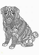 Coloring Pup Mer Animal Pdf Divyajanani sketch template
