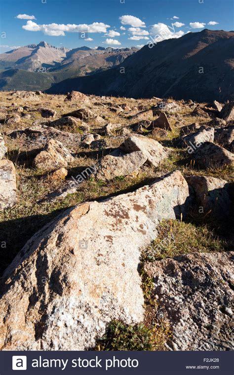 Haus Kaufen Rocky Mountains Usa by Alpine Tundra Habitat Trail Ridge Road Rocky Mountain